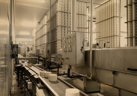 NOCTULA - Environmental Consultants was responsible for the characterization of atmospheric emissions at the company Lacticínios do Paiva, a Portuguese food processing company specialized in dairy products and derivatives.