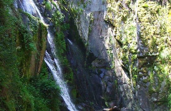 valorização ecológica de empreedimentos turísticos