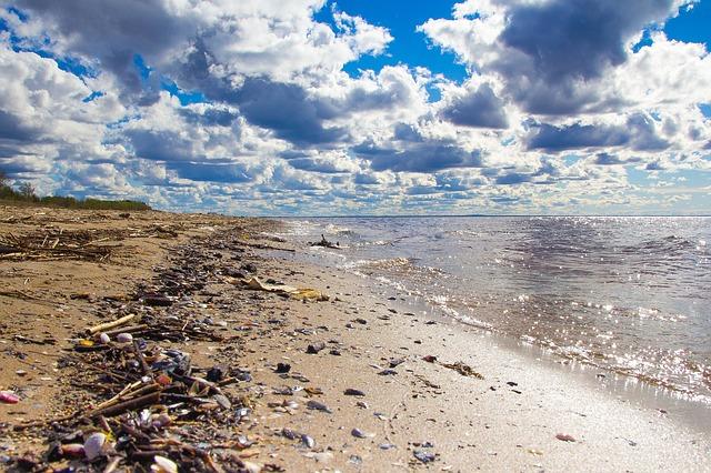 praia lixo marinho mar oceano