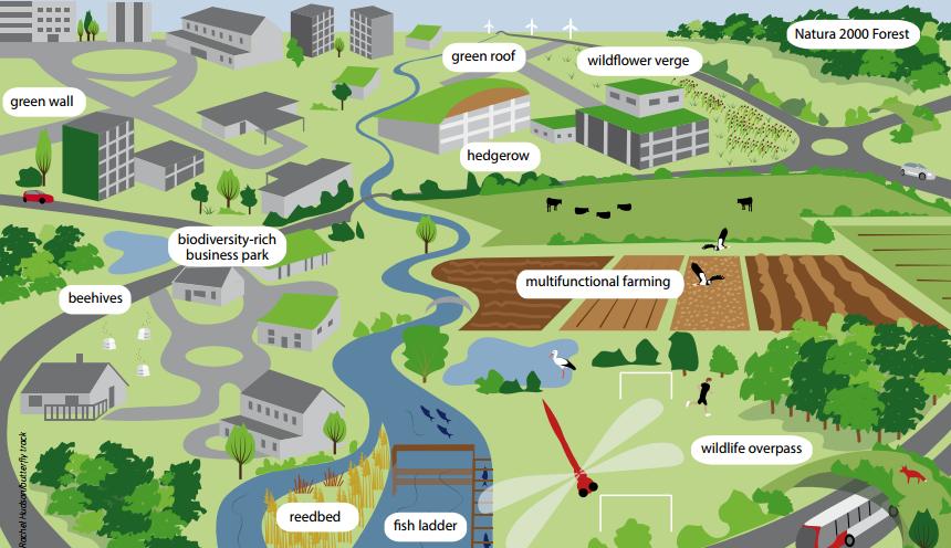 infraestruturas verdes