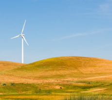 NOCTULA - Environmental Consultants was hired for technical and scientific assistance for the resolution of a litigation process involving owners, an hunting area and several wind farms in northern Portugal.