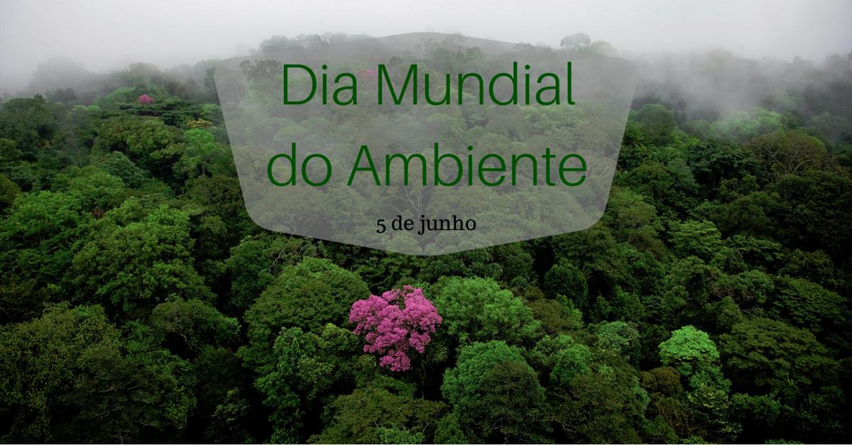 dia mundial do ambiente (2)