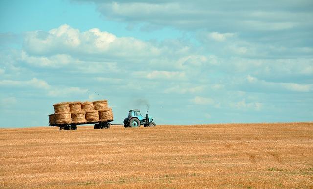 agricultura biodiversidade